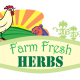 Branding Design: Farm Fresh Herbs